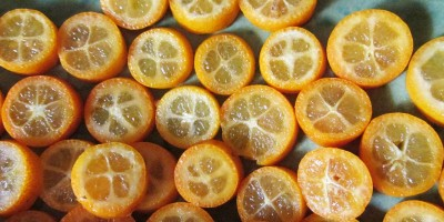 Buttermilch-Quark-Creme mit Kumquats