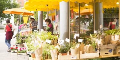 Großer Blumen- und Pflanzenmarkt am Europaplatz